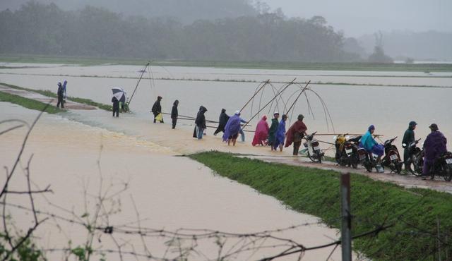 [Ảnh] Cận cảnh điểm sạt lở kinh hoàng chia cắt Quốc lộ 46, dân liều mình đứng giữa dòng lũ bắt cá ở Nghệ An - Ảnh 7.