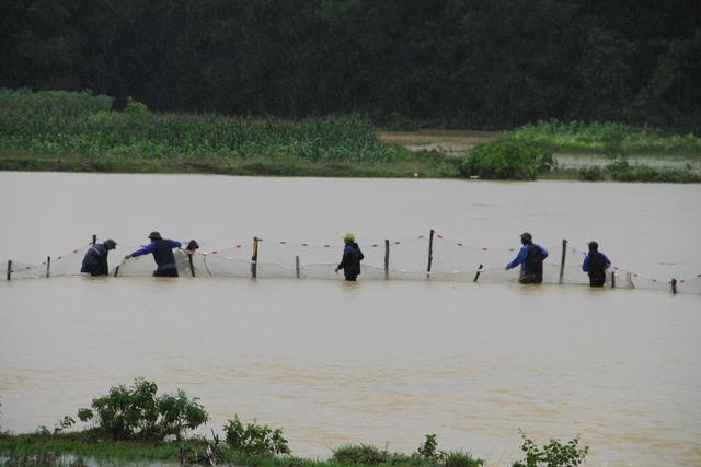 [Ảnh] Cận cảnh điểm sạt lở kinh hoàng chia cắt Quốc lộ 46, dân liều mình đứng giữa dòng lũ bắt cá ở Nghệ An - Ảnh 9.