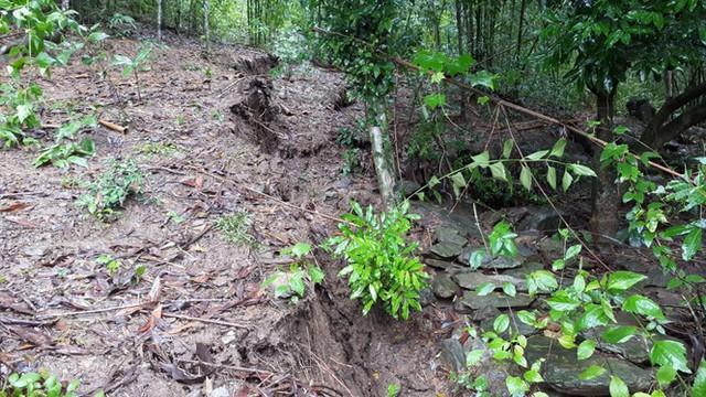 Đồi núi lở, đất đá tràn xuống 'uy hiếp' hàng trăm hộ dân miền núi Nghệ An - Ảnh 5.
