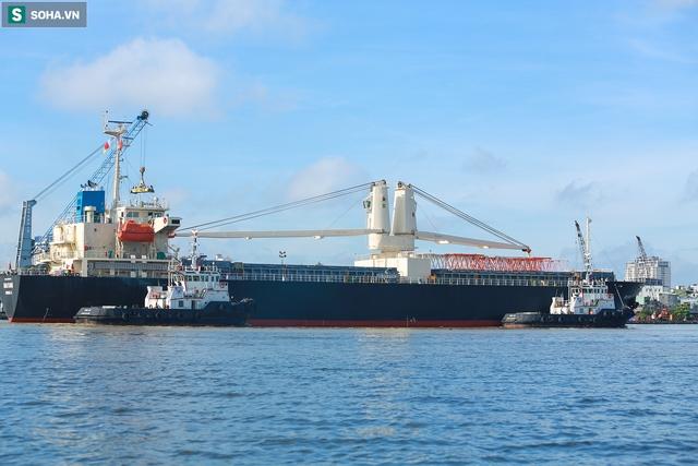 Cận cảnh tàu biển 120 mét chở 3 toa tàu metro số 1 đầu tiên cập cảng ở TP.HCM - Ảnh 5.