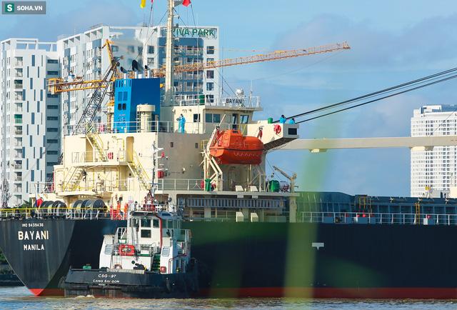 Cận cảnh tàu biển 120 mét chở 3 toa tàu metro số 1 đầu tiên cập cảng ở TP.HCM - Ảnh 6.