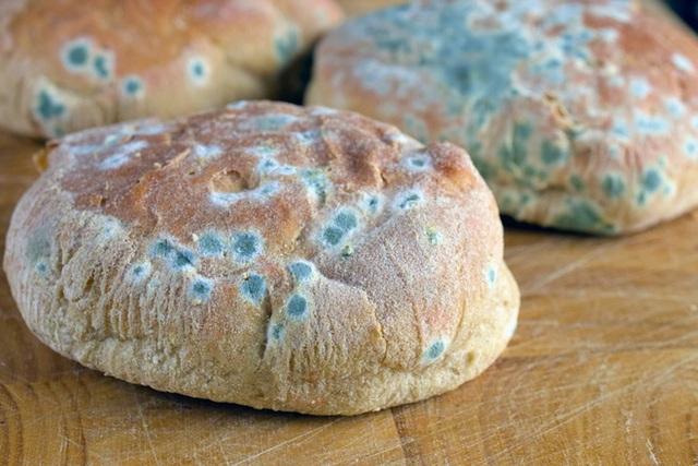 11 sự thật về bánh mì không phải ai cũng biết: Số 7 là món quà hoàn hảo từ nước Đức - Ảnh 3.