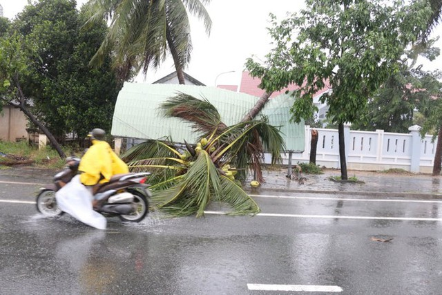 Bão đổ bộ vào Khánh Hòa, TP Nha Trang mưa to, gió lớn, nhiều nơi mất điện - Ảnh 5.