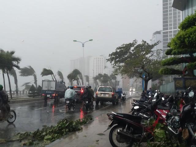 Bão đổ bộ vào Khánh Hòa, TP Nha Trang mưa to, gió lớn, nhiều nơi mất điện - Ảnh 6.
