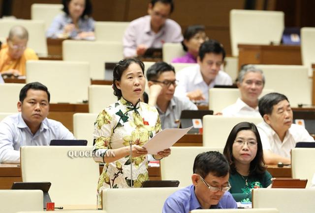 Đại biểu Quốc hội ủng hộ bỏ HĐND quận, phường ở TPHCM  - Ảnh 1.