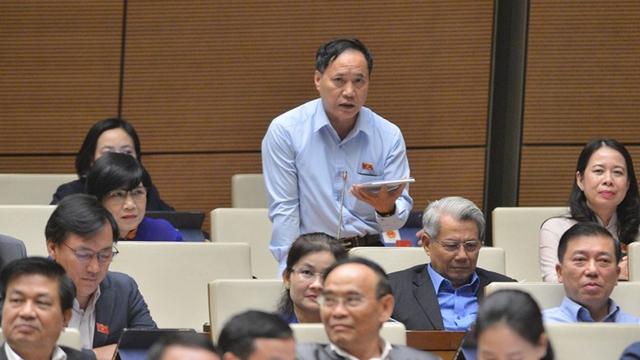 Đại biểu Quốc hội ủng hộ bỏ HĐND quận, phường ở TPHCM  - Ảnh 2.