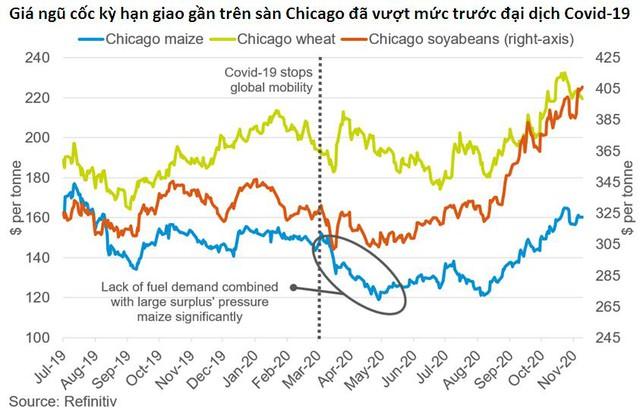 Những lý do khiến giá ngô và đậu tương thế giới tăng 25-30% trong 3 tháng qua - Ảnh 1.
