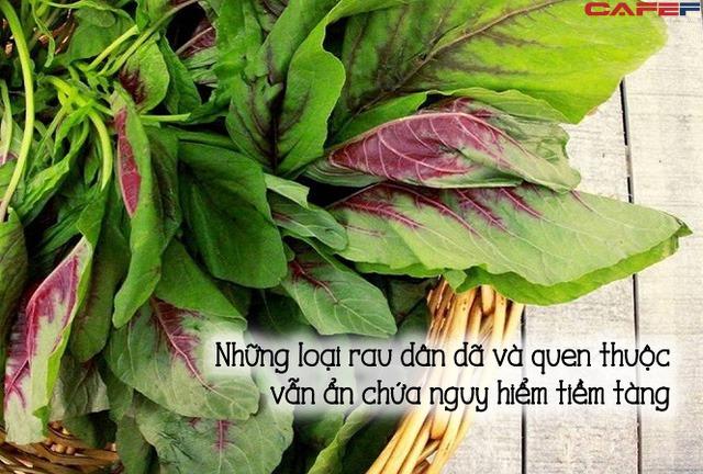 7 loại rau cần chần qua nước sôi trước khi nấu: Rất quen thuộc nhưng hầu hết người Việt đều bỏ qua bước này khiến lợi bất cập hại  - Ảnh 2.