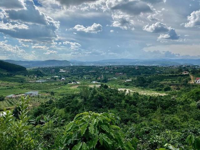Phân lô đất nền tự phát gắn mác khu nghỉ dưỡng Lâm Đồng - Ảnh 1.