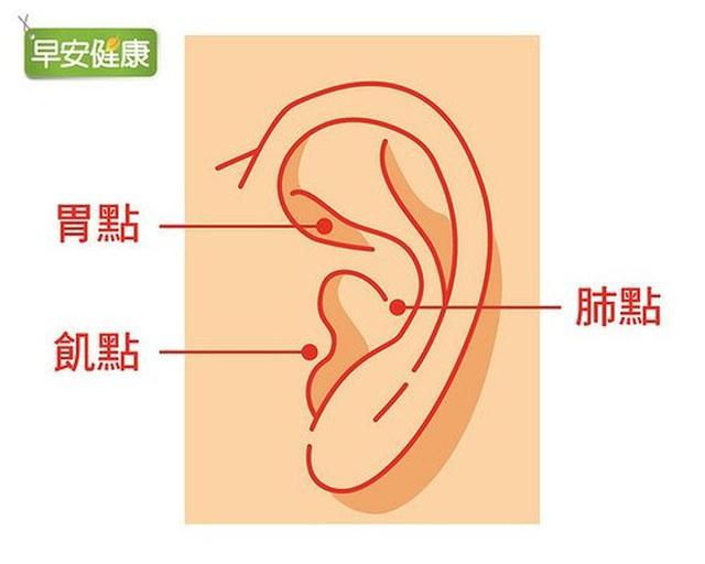 Chuyên gia Nhật Bản chỉ ra cách giảm cân đơn giản: Ấn huyệt ở vành tai - Ảnh 1.