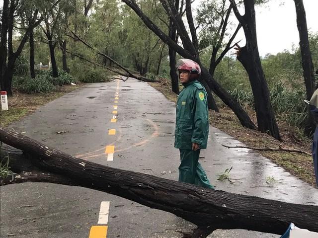 Những hình ảnh thiệt hại đầu tiên do bão số 13 gây ra ở miền Trung  - Ảnh 13.