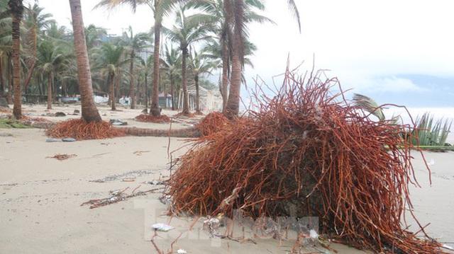 Bãi biển đẹp nhất hành tinh tan hoang sau bão số 13 - Ảnh 12.