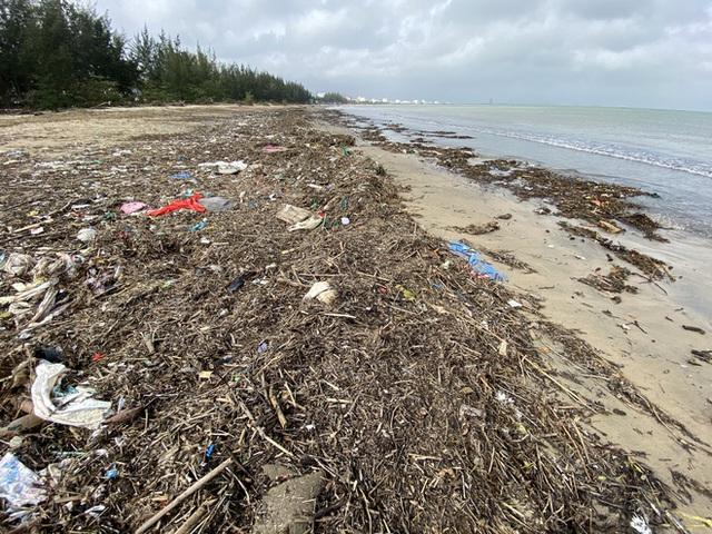 [Ảnh] Hơn 500 tấn rác dạt vào bãi biển Đà Nẵng - Ảnh 5.