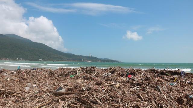Kinh hãi với những núi rác khổng lồ trên bãi biển Đà Nẵng sau bão - Ảnh 1.