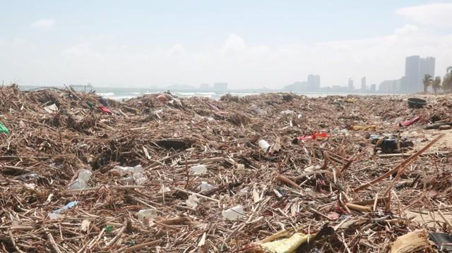 Kinh hãi với những núi rác khổng lồ trên bãi biển Đà Nẵng sau bão - Ảnh 2.