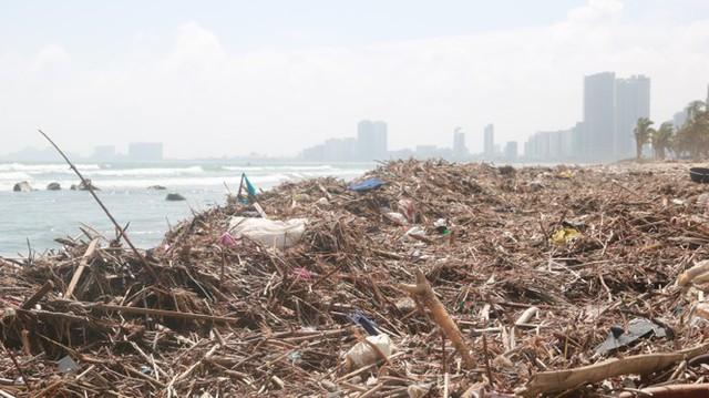 Kinh hãi với những núi rác khổng lồ trên bãi biển Đà Nẵng sau bão - Ảnh 3.