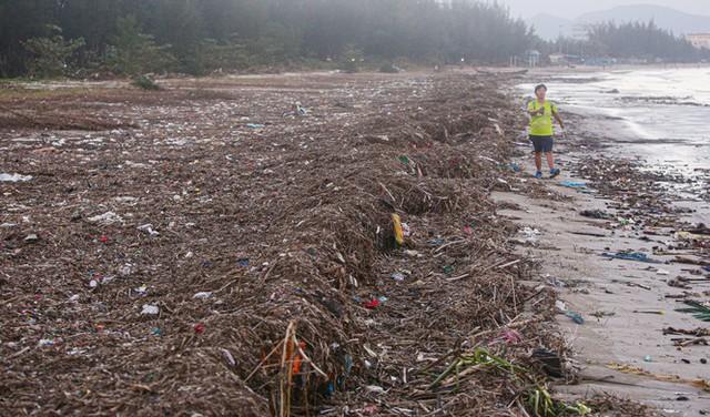Kinh hãi với những núi rác khổng lồ trên bãi biển Đà Nẵng sau bão - Ảnh 10.
