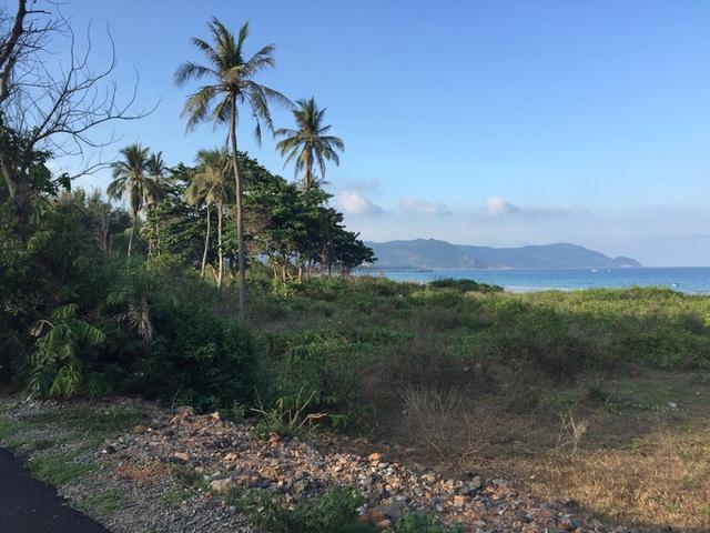 Xuất hiện nhiều nghi vấn quanh 2 hồ sơ đấu giá khu đất 80.000m2 tại Côn Đảo  - Ảnh 1.