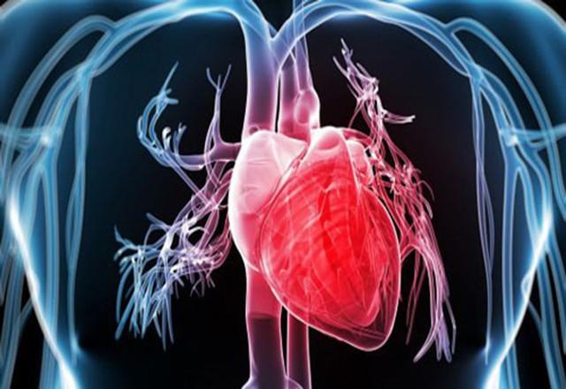 Nghiên cứu kéo dài suốt 20 năm của Harvard chỉ ra lợi ích tuyệt vời của tắm nước nóng: Không chỉ thư giãn mà còn cực kỳ tốt cho hệ tim mạch - Ảnh 2.