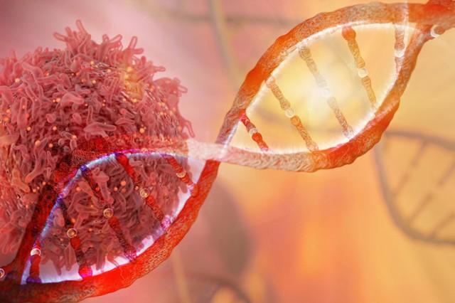 Thủ phạm gây ung thư được nêu tên số 1: Chứa 70 hóa chất phá hỏng ADN, có thể gây ra 12 loại ung thư - Ảnh 2.