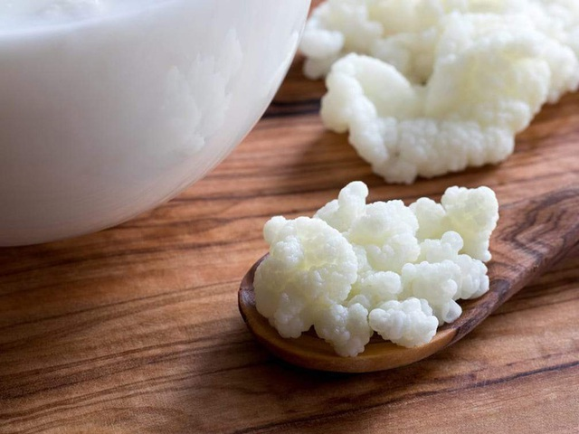 """Sự thật về loại nấm sữa chị em nô nức đem về nuôi: Có xứng danh """"tinh hoa, siêu thực phẩm? - Ảnh 5."""