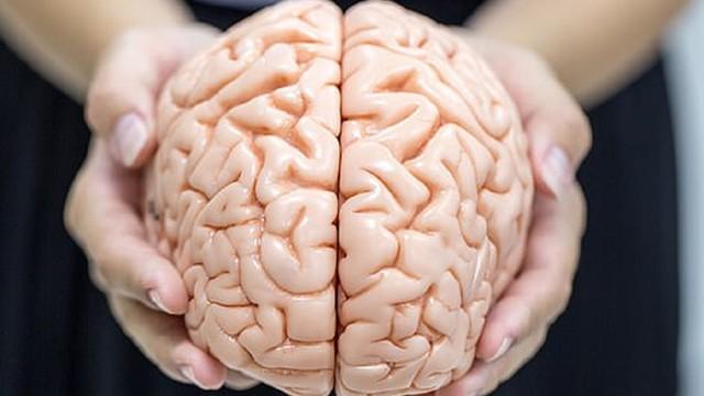 Bộ não của bạn luôn cần được tẩm bổ bằng 1 trong 6 món này mỗi ngày, ăn nhiều sẽ giúp tránh bệnh về thần kinh và trí nhớ - Ảnh 1.