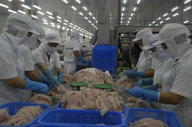 Trung Quốc tăng kiểm soát hàng thủy sản nhập khẩu, doanh nghiệp cá tra nên 'bình tĩnh' - Ảnh 1.