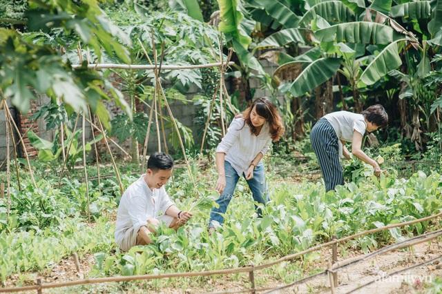 Cải tạo không gian rêu phong thành nhà vườn gói ghém những bình yên của người phụ nữ Hà Thành - Ảnh 16.