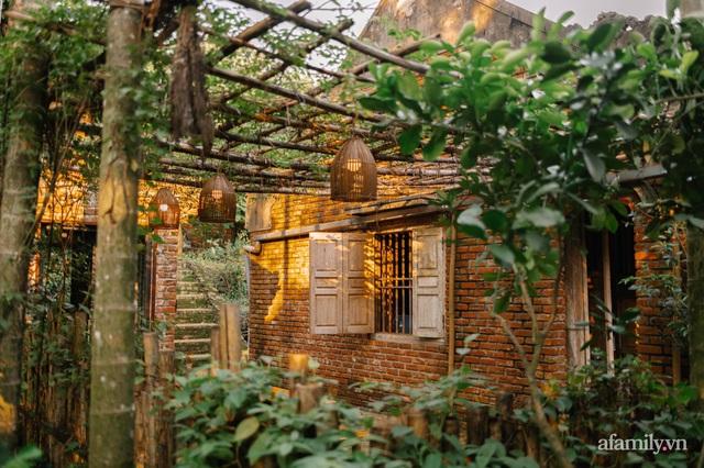 Cải tạo không gian rêu phong thành nhà vườn gói ghém những bình yên của người phụ nữ Hà Thành - Ảnh 2.