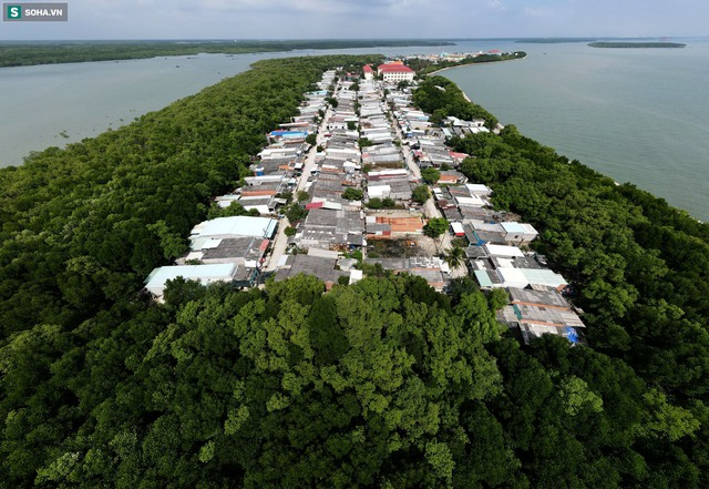 Nằm giữa biển Cần Giờ có một hòn đảo đẹp ngỡ ngàng, hoang sơ, rất ít người biết ở TP.HCM - Ảnh 11.