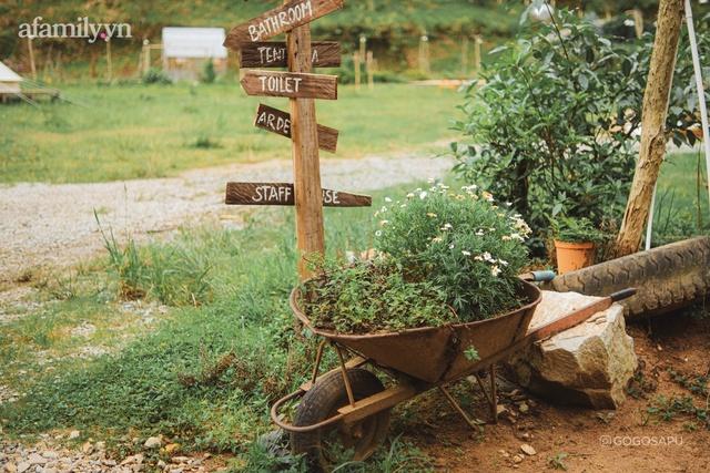 Thung lũng bí ẩn lạ lẫm ở Đà Lạt: Có hoa vàng cỏ xanh, suối mát lành đẹp như tranh vẽ, nhưng không phải cứ muốn đến là được, cũng chẳng có 3G để xài! - Ảnh 12.