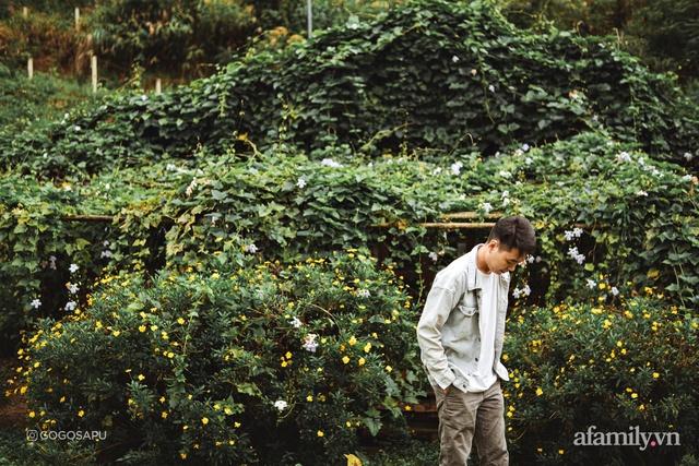 Thung lũng bí ẩn lạ lẫm ở Đà Lạt: Có hoa vàng cỏ xanh, suối mát lành đẹp như tranh vẽ, nhưng không phải cứ muốn đến là được, cũng chẳng có 3G để xài! - Ảnh 14.