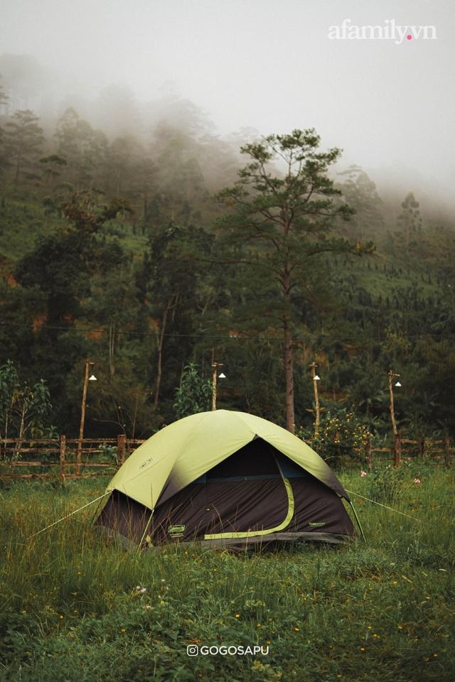 Thung lũng bí ẩn lạ lẫm ở Đà Lạt: Có hoa vàng cỏ xanh, suối mát lành đẹp như tranh vẽ, nhưng không phải cứ muốn đến là được, cũng chẳng có 3G để xài! - Ảnh 8.