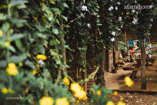 Thung lũng bí ẩn lạ lẫm ở Đà Lạt: Có hoa vàng cỏ xanh, suối mát lành đẹp như tranh vẽ, nhưng không phải cứ muốn đến là được, cũng chẳng có 3G để xài! - Ảnh 10.