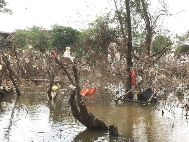 Trả tiền cho những chiếc túi nilon mắc lại cành cây sau lũ: Cách làm từ thiện đầy nhân văn ở Quảng Bình nhận nhiều lời khen từ cộng đồng mạng - Ảnh 3.