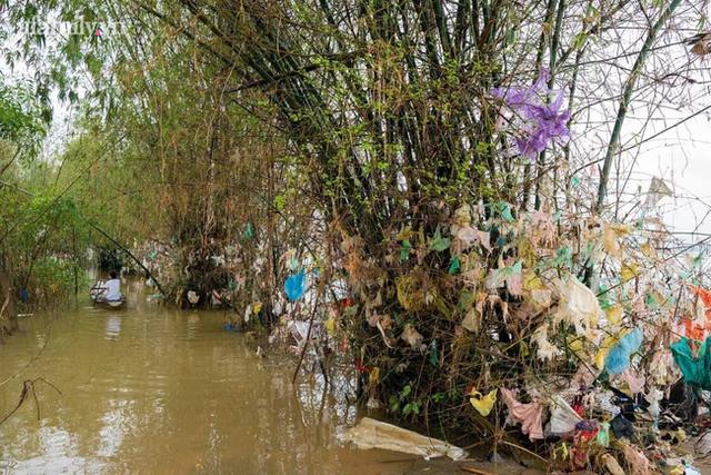 Trả tiền cho những chiếc túi nilon mắc lại cành cây sau lũ: Cách làm từ thiện đầy nhân văn ở Quảng Bình nhận nhiều lời khen từ cộng đồng mạng - Ảnh 5.