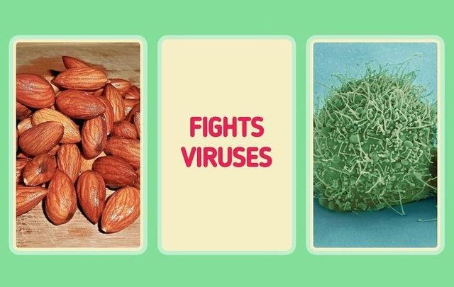 Tại sao có người rất ít khi ốm vặt, luôn khỏe khoắn, nhiều năng lượng: Thường xuyên bổ sung 10 loại thực phẩm dễ kiếm này để tăng cường sức đề kháng tự nhiên cho cơ thể - Ảnh 1.