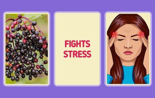 Tại sao có người rất ít khi ốm vặt, luôn khỏe khoắn, nhiều năng lượng: Thường xuyên bổ sung 10 loại thực phẩm dễ kiếm này để tăng cường sức đề kháng tự nhiên cho cơ thể - Ảnh 6.