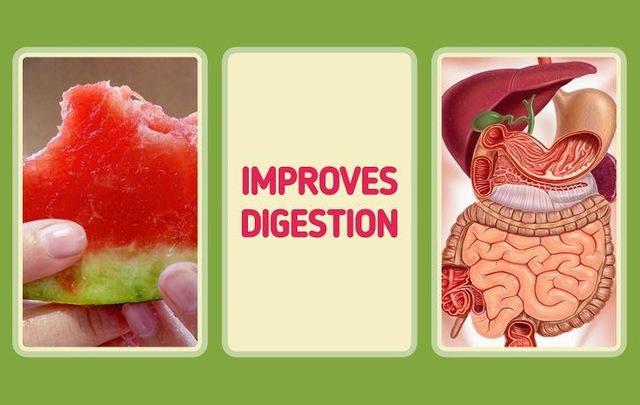 Tại sao có người rất ít khi ốm vặt, luôn khỏe khoắn, nhiều năng lượng: Thường xuyên bổ sung 10 loại thực phẩm dễ kiếm này để tăng cường sức đề kháng tự nhiên cho cơ thể - Ảnh 9.