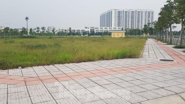 Hà Nội: Lình xình đấu giá khu đất vàng ở Long Biên - Ảnh 1.