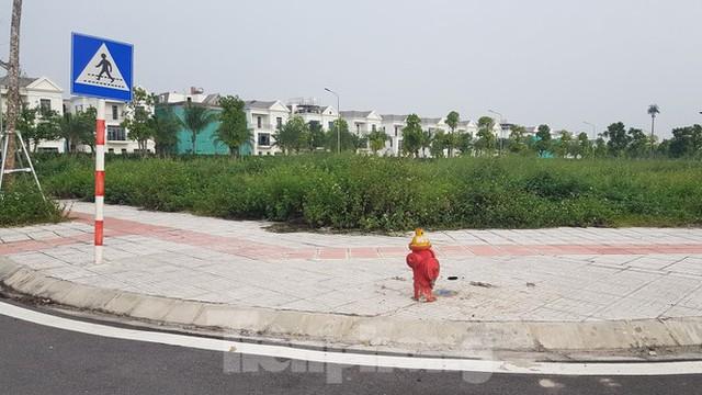Hà Nội: Lình xình đấu giá khu đất vàng ở Long Biên - Ảnh 3.
