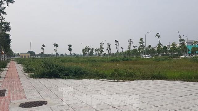 Hà Nội: Lình xình đấu giá khu đất vàng ở Long Biên - Ảnh 5.