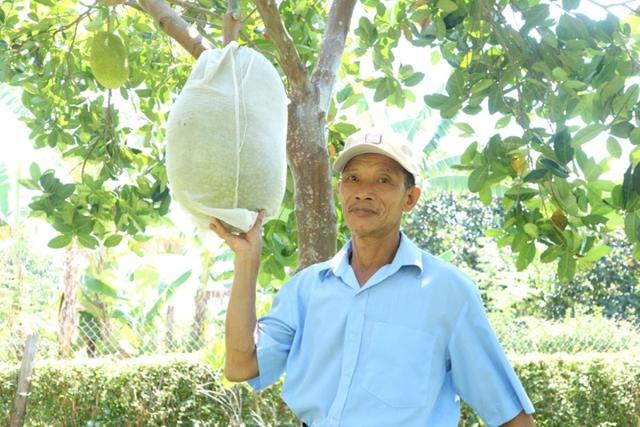 Nông dân thoát nghèo nhờ vườn cây chuyên canh  - Ảnh 3.