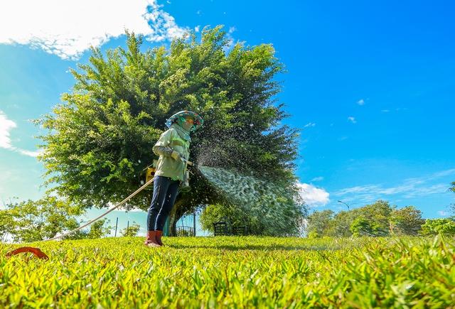Cận cảnh hoa viên nghĩa trang hơn 2.000 tỷ đồng, có cảnh quan đẹp bậc nhất Việt Nam - Ảnh 23.