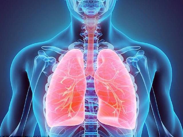 3 bộ phận cơ thể trọng yếu nhất: Biết chúng sợ gì mà tránh chính là cách để giảm bệnh tật - Ảnh 2.