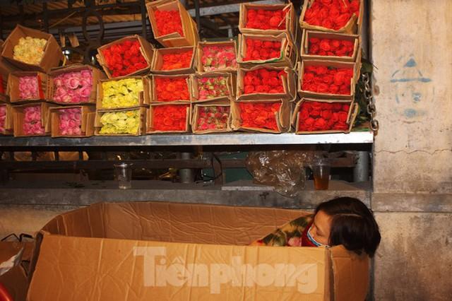 Nhọc nhằn mưu sinh trong giá lạnh ở chợ hoa lớn nhất Thủ đô - Ảnh 13.
