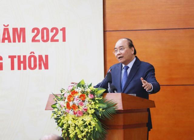 Thủ tướng nghiêm cấm chặt đào rừng chơi Tết - Ảnh 1.