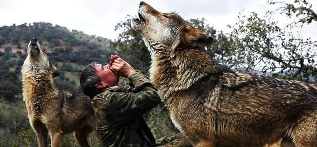 Câu chuyện có thật về cậu bé rừng xanh được bầy sói nuôi dưỡng trong 12 năm và cuộc sống sau khi tái hòa nhập cộng đồng con người - Ảnh 4.
