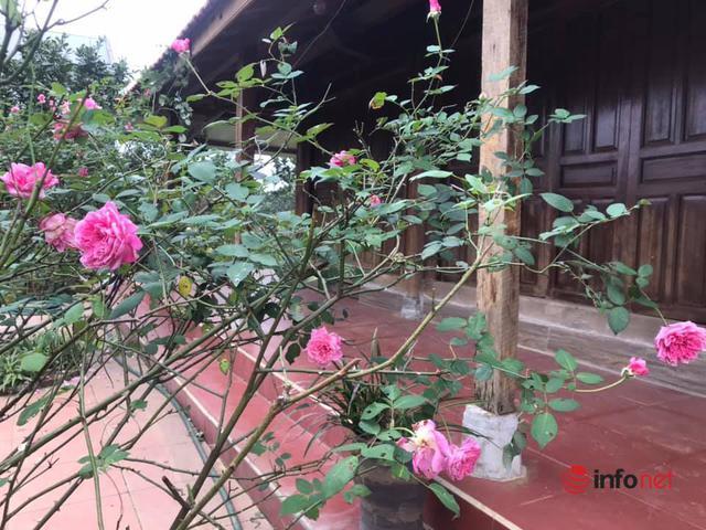 Người Hà Nội đua về các huyện mua đất vùng ven làm nhà vườn - Ảnh 2.