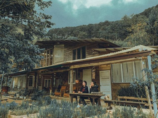 Chàng trai bỏ du học về Đà Lạt dựng ngôi nhà gỗ xinh xắn, làm nông trại và kể câu chuyện thời thanh xuân của riêng mình - Ảnh 12.